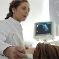 Themenbild Diagnose Nierenkrankheit